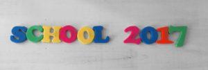 School Blog Post 2017